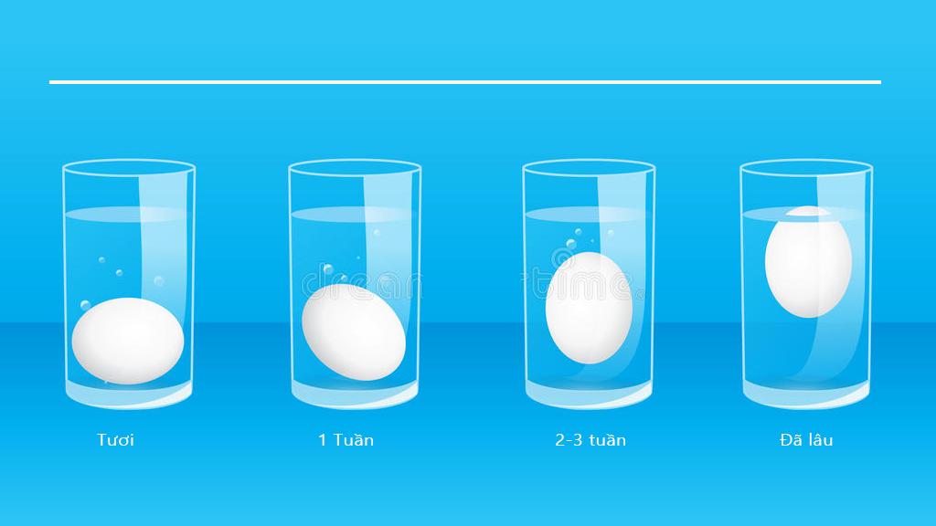 cách kiểm tra trứng tươi