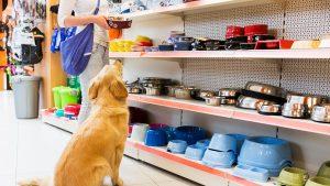cửa hàng phụ kiện thú cưng tphcm