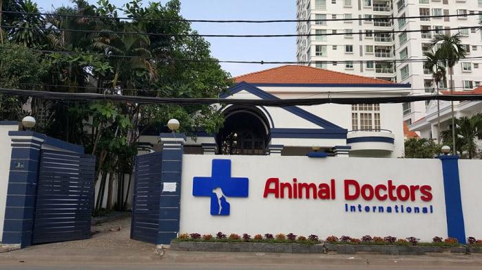 bệnh viện thú y tphcm - animal doctors
