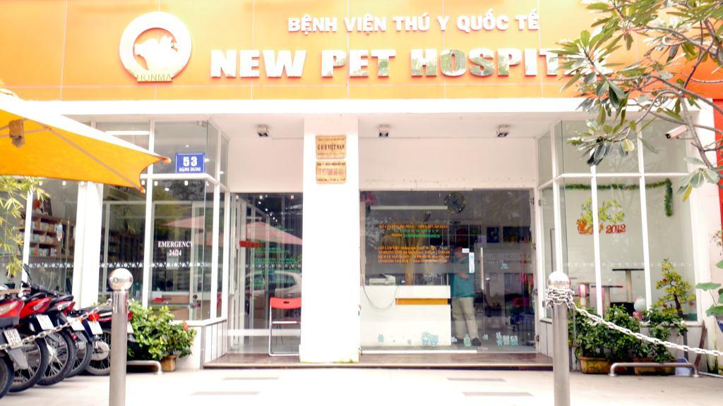 phòng khám thú ý tphcm - new pet hospital