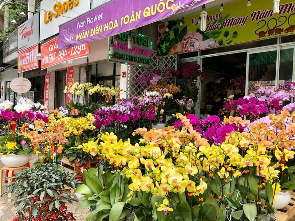 shop hoa tươi cần thơ - Ỷ Lan