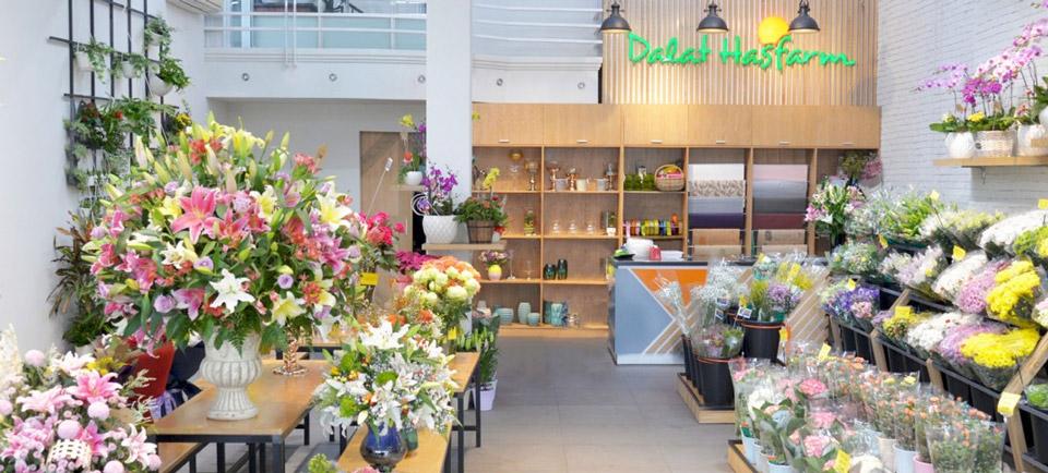 shop hoa đẹp hà nội - Dalat Hasfarm