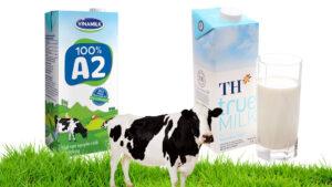 sữa vinamilk và th true milk đà nẵng
